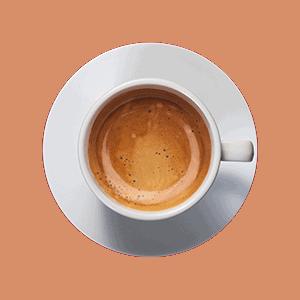 abonauten produktwelt kaffee